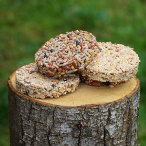 Bird Seed Cookies - bird feeders