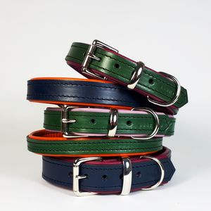 Padded Leather Dog Collar - favourites