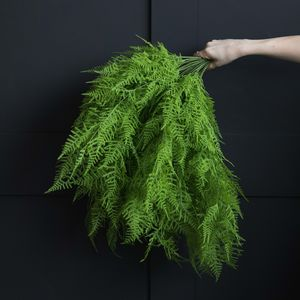 Abigail Ahern Asparagus Fern Bush - room decorations