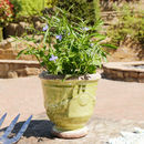 Crackle Green/White Stone Planter
