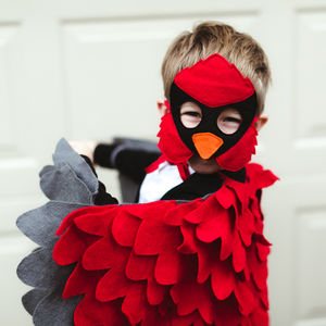 Red Cardinal Mask And Wing Cape Children's Costume - fancy dress
