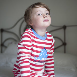 Personalised Dinosaur Pyjamas - clothing