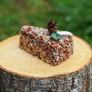 Christmas Bird Food Cakes Gifts For Mum