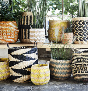 Colour Pop Sea Grass Baskets