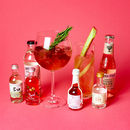 Pink Gin And Tonic Set