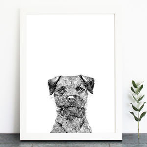 Border Terrier Print - pet-lover