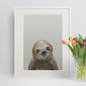 Nursery Decor Sloth Peekaboo Animal Print - baby's room