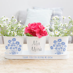 Personalised Daisy Plant Pots And Seeds - pots & planters