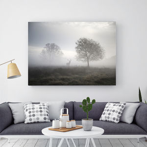Mysterious Beauty, Canvas Art