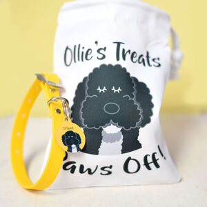 Personalised New Dog Hamper, Tag, Collar And Treat Bag