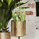 Gold Harlequin Pattern Plant Pot