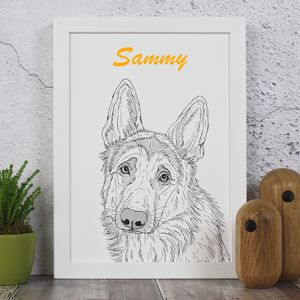 German Shepherd Dog Portrait Print