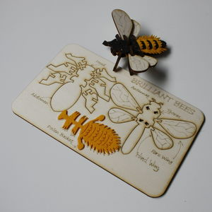 Slot Together Brilliant Bee Kit