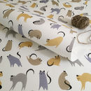 Multi-colour cat wrapping paper