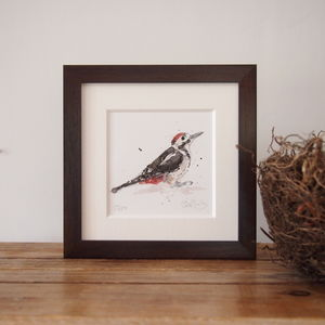 Limited Edition, Garden Bird Print, Spotted Woodpecker