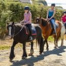 Child's Beach Horse Riding Experience