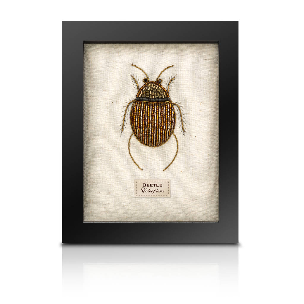 The Bullion Beetle Collection *Beetle