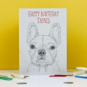 French Bulldog Birthday Card