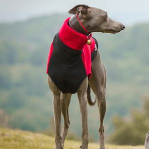 Two Tone Fleece Dog Jumper - dogs