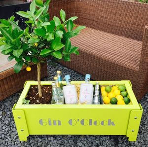 Gin O'clock Garden Party Planter - gardening
