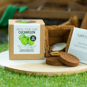 Grow Your Own Cucamelon Plant Kit - seeds & bulbs