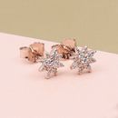 Rose Gold Celestial Star Earrings