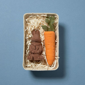 Chocolate Bunny And Large Carrot - best easter food & drink