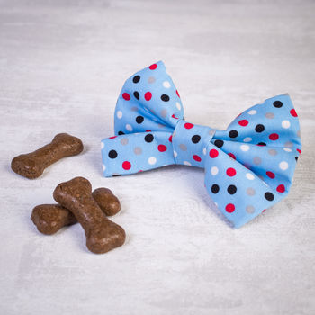 Blue Polka Dot Dog Bow/ Bow Tie For Dogs