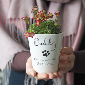 Personalised Pet Memorial Plant Pot Vase With Seeds - pots & planters