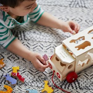 Personalised Safari Animal Shape Sorter Toy Lorry - building blocks & stacking toys