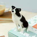 Border Collie Needle Felting Craft Kit