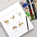 British Wildlife Writing Paper Gift Set