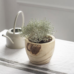 Handmade Wooden Plant Pot