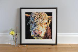Herbie Hereford Bull Print - animals & wildlife