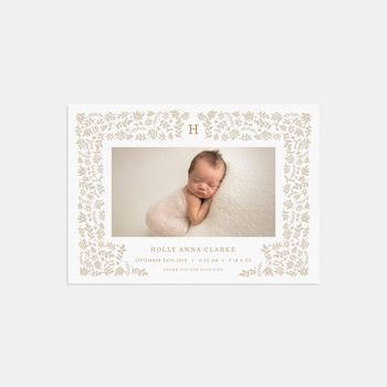20 Harvest Photo Birth Announcements Thank You Cards