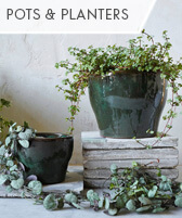 shop pots and planters