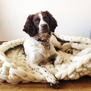 Luxury Knitted Dog Bed - beds & sleeping