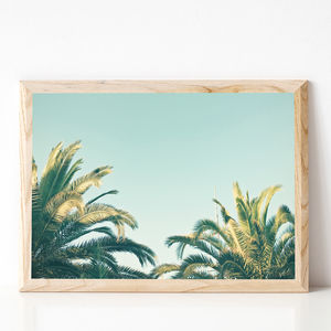 Summer Time Photographic Palm Tree Print - nature & landscape