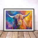 Harris The Highland Coo By Sue Gardner Fine Art Print