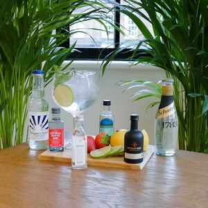 The Four English Gins And Tonics Tasting Gift Set