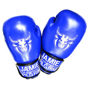 Personalised Boxing Gloves - outdoor toys & games