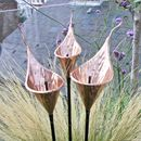 Copper Fluted Arum Lily Sculpture