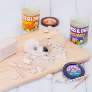 Fossil Dig Excavation Kit
