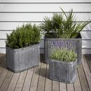 Square Ribbed Planters