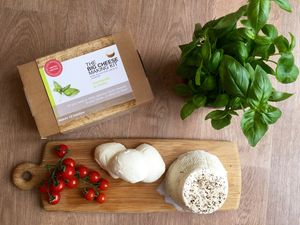 Make Your Own Mozzarella And Ricotta Cheese Making Kit - gifts for her