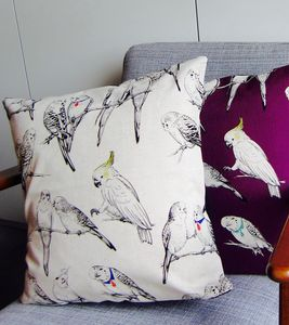 Budgie And Parrot Cushion - patterned cushions
