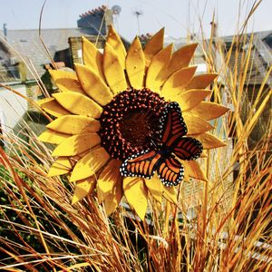Sunflower Garden Sculpture With Orange Butterfly - shop by price