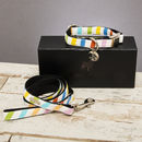 The Thurlesetone Pastel Dog Collar And Lead Set