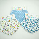 Baby Bibs Luxury Gift Set