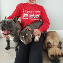 Three Frenchies Christmas Jumper